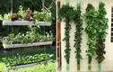 Những ý tưởng thiết kế vườn treo đẹp cho nhà chật chội
