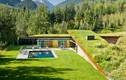 Vẻ đẹp của ngôi nhà mái cỏ cực độc nhất vô nhị