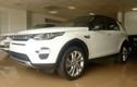 Land Rover Discovery Sport chính hãng đầu tiên cập bến Hà Nội
