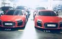 """Cặp """"song sinh"""" siêu xe Audi R8 V10 Plus tại Sài Gòn"""
