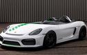 Porsche từng có ý định hồi sinh huyền thoại Bergspyder