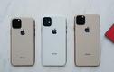Giá iPhone 11 tại Việt Nam sẽ bán ra từ 23 triệu đồng