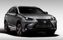 Xe sang Lexus NX 300 Black Line Special Edition 2020 trình làng