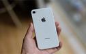 iPhone SE2 ra mắt năm 2020, chip giống iPhone 11