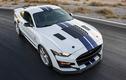 """Ngắm Shelby American GT500 """"rồng rắn"""" mạnh hơn 800 mã lực"""