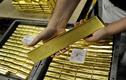 Giá vàng hôm nay 12/11: Giá vàng tiếp tục giảm