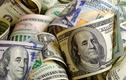 Tỷ giá ngoại tệ 10/12: USD tự do bất ngờ tăng, vượt đỉnh