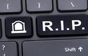 Một website sẽ ra sao nếu chủ nhân nó qua đời?