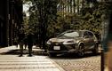 """Lexus ra mắt NX và UX phiên bản màu """"cực độc"""""""