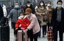 Sợ virus corona, hàng loạt khách hủy tour du lịch Đà Nẵng