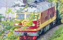 Đề nghị dừng tàu liên vận Việt - Trung phòng virus corona