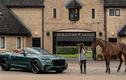 "Ra mắt Bentley Continental GT Convertible đặc biệt ""Equestrian"""