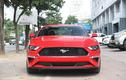 Cận cảnh Ford Mustang 55th Edition hơn 3 tỷ đồng tại Hà Nội