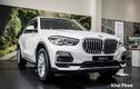 Cận BMW X5 xDrive 40i xLine mới hơn 4 tỷ đồng tại Việt Nam