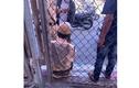 Khởi tố tài xế ô tô kéo lê trung uý CSGT hàng chục mét trên đường Hà Nội