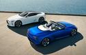 Lexus LC 500 Convertible 2021 sẽ bán ra từ hơn 2,3 tỷ đồng