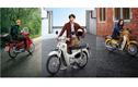 Honda Super Cub 2020 từ 36 triệu đồng có gì hay?
