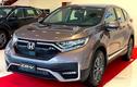 Lượng ôtô nhập khẩu nguyên chiếc về Việt Nam giảm mạnh