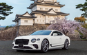 "Chi tiết Bentley Mulliner Continental GT V8 Equinox ""hàng thửa"""