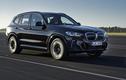 BMW iX3 2021 - SUV điện chạy 460 km/một lần sạc đến Mlaysia