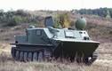 """Belarus chào hàng Việt Nam, ĐNA gói nâng cấp """"taxi"""" BTR-50"""