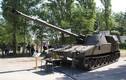 Quân đội Indonesia đòi mua 20 pháo tự hành M109 làm gì?