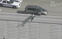 Liều lĩnh nhảy cầu cao 7m để trốn cảnh sát