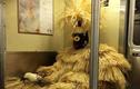 """Những hành khách """"quái dị"""" nhất trên tàu điện ngầm, ai nhìn cũng phải bật cười"""