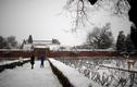 """Hé lộ cuộc sống trong các thành phố """"ma"""" Trung Quốc giữa đại dịch virus corona"""