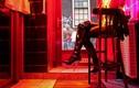Góc tối nghề vũ nữ thoát y của cô gái Canada
