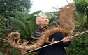Kinh ngạc bộ sưu tập rễ tre của cụ ông 91 tuổi
