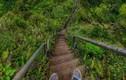 Thót tim với 10 bậc thang đáng sợ nhất thế giới