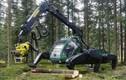 """Xem máy cắt gỗ siêu tốc, đốn hạ khu rừng trong """"nháy mắt"""""""