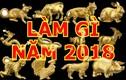 Video: Vận hạn tháng 1 năm 2018 của 12 con giáp