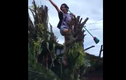 Leo lên cây quẩy và cái kết đầy bất ngờ