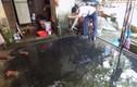 Kinh hoàng nước cống dội ngược vào nhà dân giữa Hà Nội