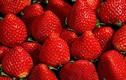 8 loại trái cây chống nắng hiệu quả nên ăn ngày nóng
