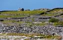 Khám phá những bức tường đá kỳ lạ ở Ireland