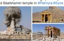 Hình ảnh IS phá hủy đền Baal Shamin 2.000 tuổi ở Palmyra