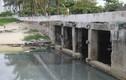 Nước thải chảy ồ ạt ra biển Đà Nẵng, cơ quan quản lý nói gì?