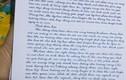 Nhói lòng bức tâm thư 500 giáo viên hợp đồng sắp mất việc gửi Thủ tướng