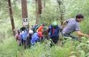Vượt thác Datanla ở Đà Lạt, du khách Hàn Quốc tử vong