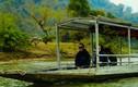 """Vẻ đẹp """"hùng vĩ"""" của hồ nước ngọt tự nhiên lớn nhất Việt Nam"""