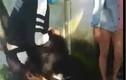 Quảng Nam: Xôn xao clip 2 thiếu nữ bị đánh hội đồng dã man