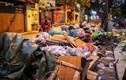 Rác ngập ngụa bủa vây Hà Nội vì lùm xùm bãi rác Nam Sơn