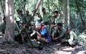 Hiếu kỳ lễ cúng Rừng của người dân tộc thiểu số Tây Nguyên