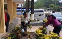"""Phản cảm cảnh """"hôi"""" hoa trang trí ở ga Đồng Đăng"""