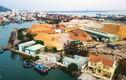Cận cảnh cảng Quy Nhơn bị bán cổ phần với giá 'rẻ như cho' Minh Hoàng