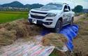 Nữ tài xế xe bán tải đi qua lúa của dân gây tranh cãi