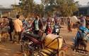 Người dân đổ xô đi mua xăng, dầu về tích trữ vì tin đồn cây xăng đóng cửa